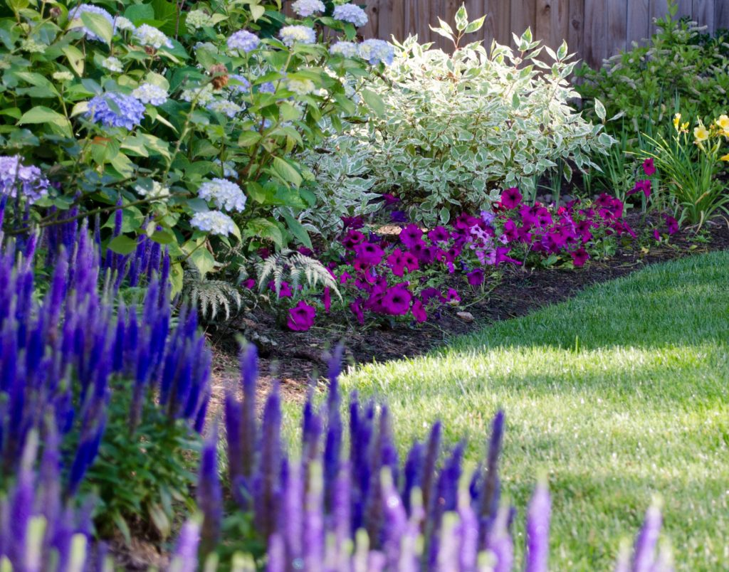 Landscape Maintenance in Northern Virginia, Maryland & Washington, DC